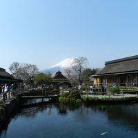 忍野八海と富士山と桜◆2016年4月/静岡&山梨で富士山を愛でる旅《その7》