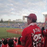 プロ野球観戦 ヤクルト—広島 神宮球場 試合内容編