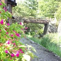 会社帰りに近江八幡まで翌朝は近江八幡散策、後半知恩院へ朝のお勤めへ続く