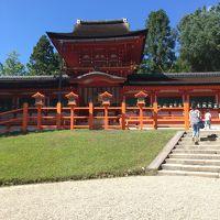 奈良公園(春日大社と東大寺)と当地グルメ