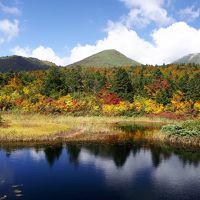 秋の青森絶景旅〜奥入瀬・八甲田山〜