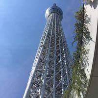はとバスで東京見物(東京スカイツリー、浅草、隅田川下り、昼食はホテルで食べ放題)