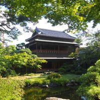 新潟旅行2日目は弥彦、新潟市内観光をしました