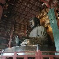 京都から奈良に日帰り旅!薬師寺・春日大社・東大寺・興福寺 2017年10月