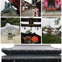 秋の関西 夫婦別行動の旅 (四半世紀ぶり京都編)
