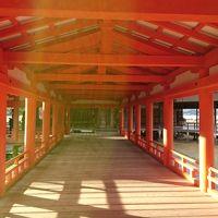 **消えずの霊火に祈りを込めて・・・厳島神社と弥山散策の旅**