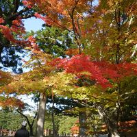 3年連続東北の秋を楽しむ<平泉編>