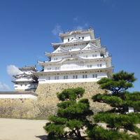 天気がいいので姫路城へ