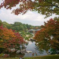 広島の紅葉を楽しみました☆