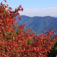 錦秋の御岳山 2017年