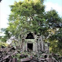 悠久の歴史〜インドシナの遺跡・世界遺産を訪ねる旅 その� 7日目その3:廃墟と化した寺院ベンメリアへ!