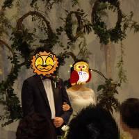 コップとカーの『ちょっとそこまで♪♪』 21 結婚式で東京へ!おのぼりさんの旅♪♪