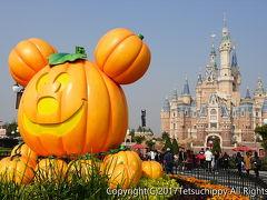 2回目上海で上海ディズニーランド、野生動物園と上海グルメ旅!