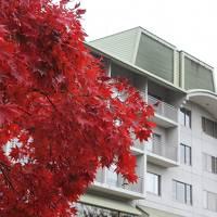 富士ビューホテルの紅葉はまだまだ見頃(11月8日・3-1)