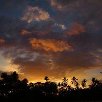 大自然を満喫!JALパックで行くハワイ島一人旅1*・゜・*カイルアコナをホロホロ*・゜・*