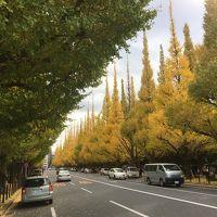 2017年11月 東京散策� 明治神宮野球大会と銀杏並木を楽しむ
