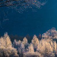 初冬の奥日光、小田代ケ原 〜霧氷に覆われた白銀の世界〜