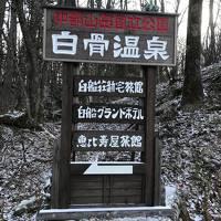 白骨温泉『5つ星の宿』と飛騨高山酒蔵巡り・のどかなローカル列車の旅