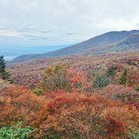 1泊2日 栃木県 那須高原 紅葉狩りとミニ苔盆栽作り (前編) 紅葉の那須高原に感動