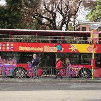 ローマの世界遺産が見たいと息子が言うので その1はホップオンホップオフバスで