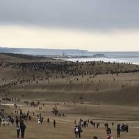 鳥取砂丘でGO