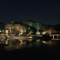 2017年11月 東京散策� 3度目の六義園 紅葉ライトアップ