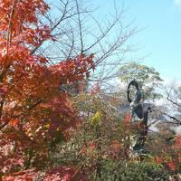 車で四国八十八ヶ所お遍路の旅 、香川県66番から71番、高知県28番から32番、 その1