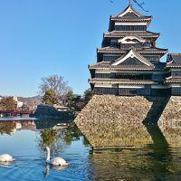 1泊2日 長野県 粉雪の舞う白骨温泉、ついでにVR (前編) 朝の松本城