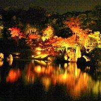 滋賀県の紅葉巡り�彦根城・玄宮園ライトアップ2017年11月