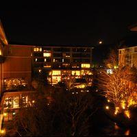 2018年1月 週末温泉旅 in ホテルハーヴェストVIALA箱根翡翠 〜 美味しい食事と温泉を楽しむ…が、翌日は大雪 ( ゚д゚)