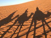モロッコ 5  エルフード メルズーカ