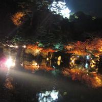 母と二人で彦根旅〜玄宮園ライトアップは幻想的!