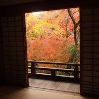 秋の京都2017 一人旅 その2 〜清凉寺、宝筐院、厭離庵、大覚寺〜