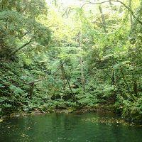 「どこかにマイル」で行った 日帰り旅行 三沢・十和田湖ツアー