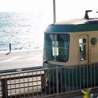 横浜、鎌倉、TDR の旅 �