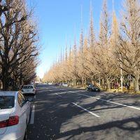 歴史・文化・ロケ地をめぐる信濃町ウォーキング