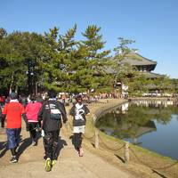 奈良マラソン2017 10キロ参加とマラソン応援