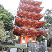 宮崎〜福岡バースデイツアー (2)福岡 東長寺