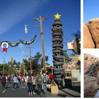 カリフォルニア ディズニーへ 2日目 カーズランドを楽しんだ♪〜*