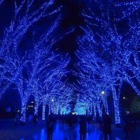 渋谷のイルミネーション青の洞窟が見たくて行ってきました