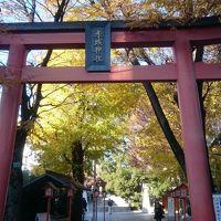 2017/12〜2018/01  赤城神社・東京大神宮