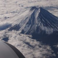 目的地は博多だが、今年も長崎に不時着。グラバー園からの夜景はスゴイ!