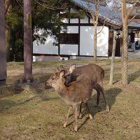 奈良うまし冬めぐり お地蔵様多めの前半