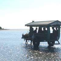石垣島・竹富島・西表島で過ごす休日