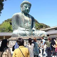 日帰り旅行in鎌倉・湘南