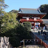 新年は鎌倉鶴岡八幡宮参拝から。その後は白旗神社、明王院、光触寺を参拝し金沢八景の瀬戸神社まで。