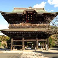 冬の鎌倉・古刹めぐり