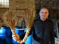 2017年 ジョージアワイン巡り 8 クヴェヴリ製ワインを堪能する 2 Numisi Winery
