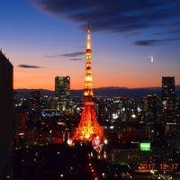 2017 2大タワーと都内夜景が一望できる世界貿易センタービルシーサイドトップ