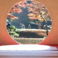 晩秋の鎌倉にて